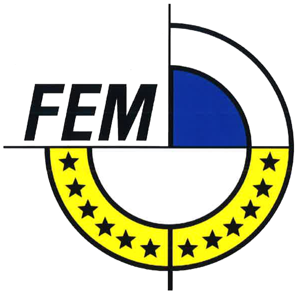 FEM Logo transparent